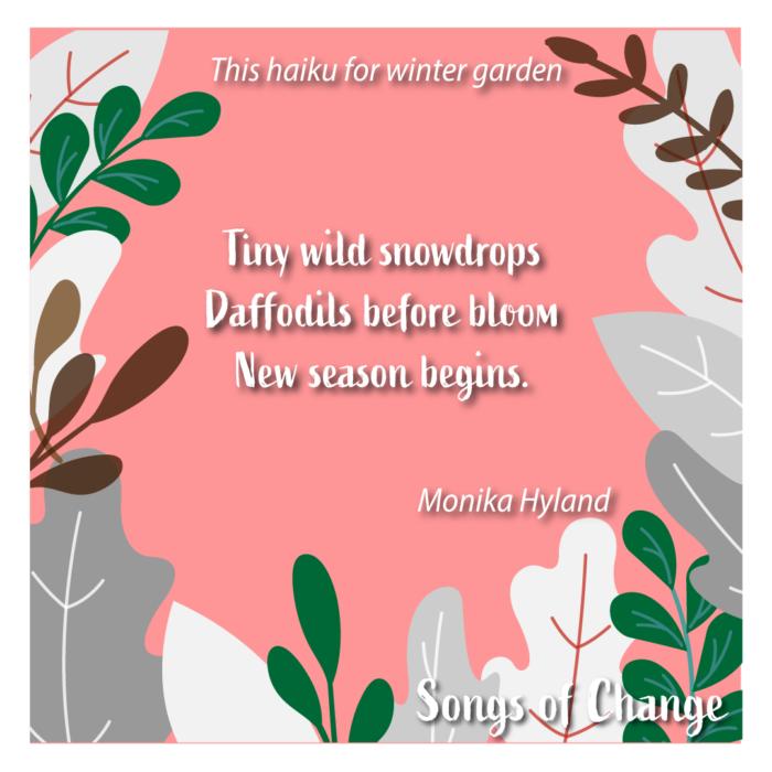 Poem, This haiku for winter garden, Tiny wild snowdrops Daffodils before bloom New season begins. Monika Hyland.