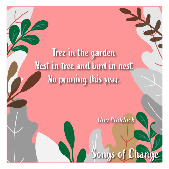 Poem, Tree in the garden Nest in tree and bird in nest No pruning this year. Una Ruddock, Peom 2.