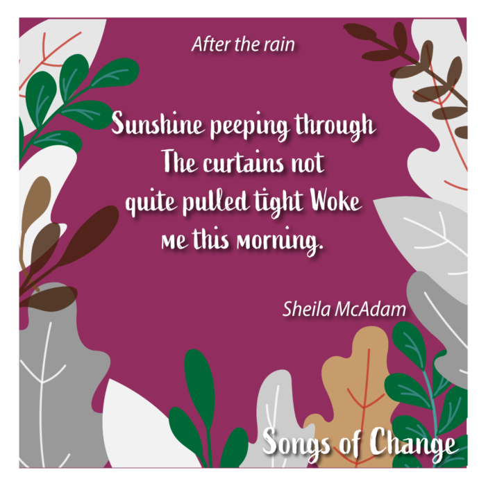 Poem February 2021 Song of Change poetry Anonymous The Civic by Sheila McAdams